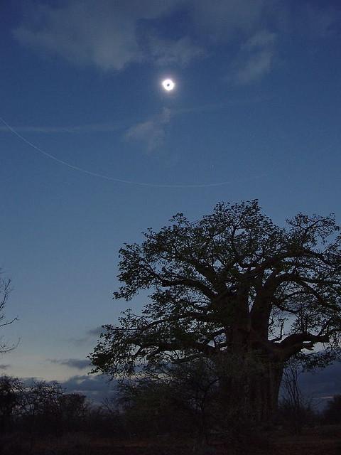 Total solformørkelse over Afrika (2002). Kilde: Michael Karrer (cc)
